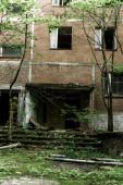 Fényképek elhagyott barna épület penész a lépcsőn közelében zöld fák csernobili