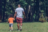 indietro vista del padre africano americano e figlio tenendo le mani mentre cammina nel parco