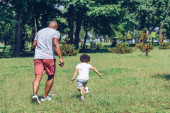 Fotografie back view of african american father and son playing football in park