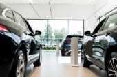 selektivní zaměření černých luxusních aut v autosalonu