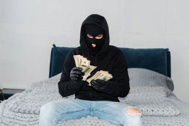Thief in mask and leather gloves counting dollars on bed stock vector