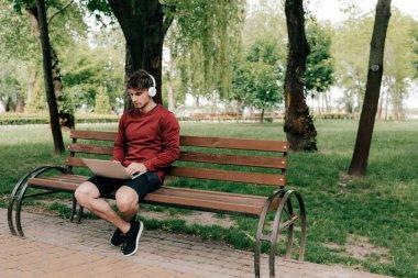 Handsome man in headphones using laptop on bench in park