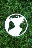 Draufsicht auf Papier Planetenschild auf grünem Gras, Ökologiekonzept