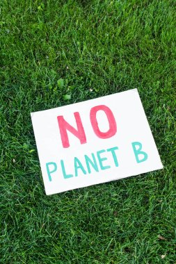Top view of placard with no planet b lettering on grass, ecology concept stock vector