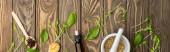 vrchní pohled na pilulky v lžíce, malty, zelené bylinky a láhev na dřevěném povrchu, naturopatie koncept