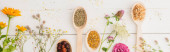 panoramic shot of herbs in spoons and flowers on white wooden background, naturopathy concept
