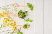 top view of herbs and green leaves in spoons near flowers on white wooden background, naturopathy concept