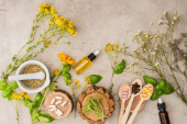 top view of herbs, green leaves, mortar with pestle, bottles and pills in wooden spoons on concrete background, naturopathy concept