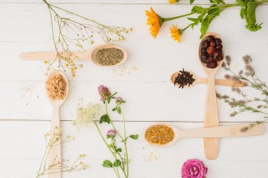 Top view of herbs in spoons and flowers on white wooden background, naturopathy concept stock vector
