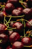 close up view of wet ripe sweet cherries