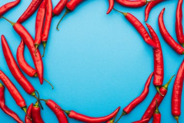 Round frame made of spicy red chili peppers on blue background with copy space stock vector