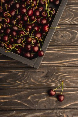 Top view of ripe sweet cherries in box on wooden surface stock vector