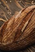 Fotografie Nahaufnahme von frisch gebackenem braunem Brotlaib mit Stäbchen auf Holzoberfläche
