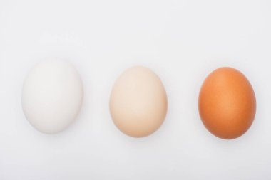 Top view of colorful fresh chicken eggs isolated on white stock vector