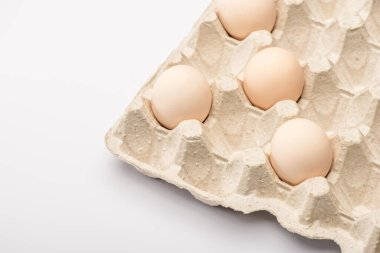 Close up view of fresh chicken eggs in cardboard egg tray on white background stock vector