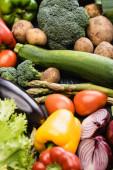 selektivní zaměření zralých barevných zeleniny