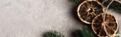 Website header of dried orange slices and pine brunch on textured background