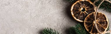 Website header of dried orange slices and pine brunch on textured background stock vector