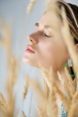 Young woman with closed eyes near wheat spikelets on blurred foreground stock vector