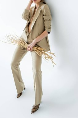 Cropped view of young model in beige suit standing while holding wheat on white stock vector