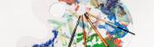 pohled shora na paletu s barvami a štětci izolovanými na bílém, panoramatický záběr