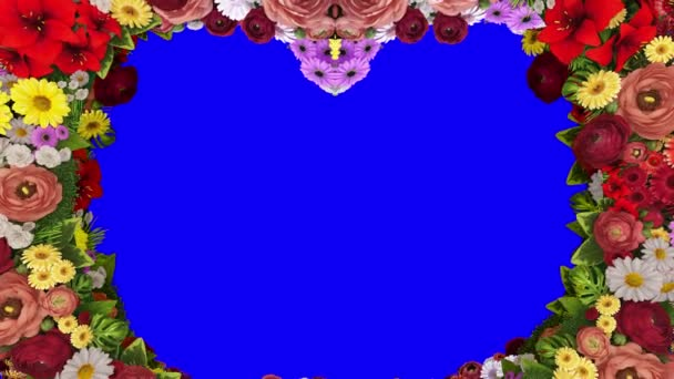 Animation of swirling colors forming the silhouette of a heart on a blue background. Template for greetings for wedding, Valentines Day, mothers Day, family Day, birthday.