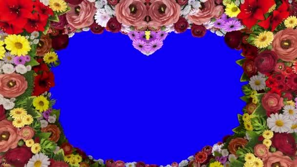 Animace z vířící barvy tvoří silueta srdce na modrém pozadí. Šablona pro pozdravy pro svatbu, Valentýn, matky den, rodinný den, narozeniny. Loop video.