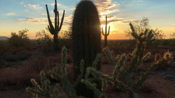 Scottsdale Arizona pouštní západ slunce