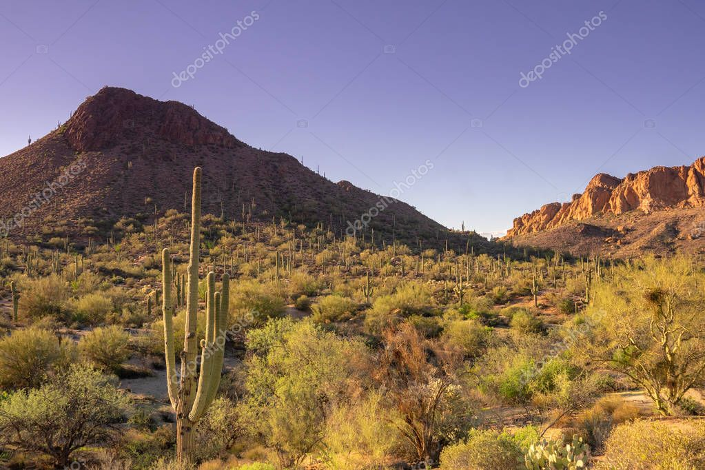 South West USA, Arizona desert Landscape, Superstition Mountain near Phoenix.