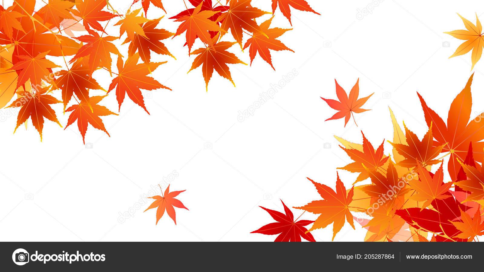 Hojas oto o oto o fondo vector de stock jboy24 205287864 - Descargar autumn leaves ...