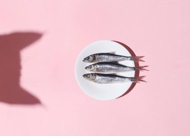 Cat vs fish. Curious cat shadow and plate with silver fish on pink background. Hard light. Top view. Flat lay. Curiousity and food concept