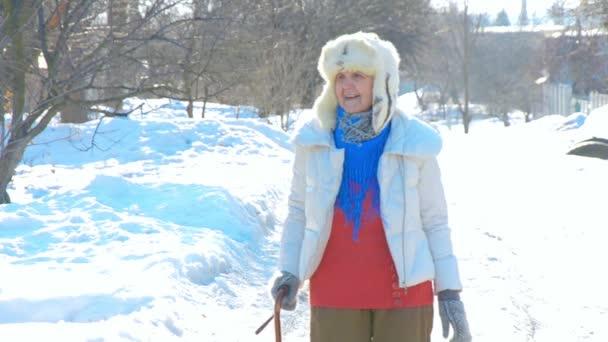 Großmutter geht mit Stock auf der Straße. alter Mensch, der sich auf einen Gehstock stützt. kaukasische Seniorin im kalten Winter. Modedame draußen. Gesunde Freizeit der Oma mit Pelzmütze. .