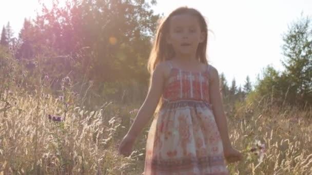Kislány sétál a nyári mezőn