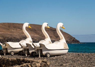 Swan pedal boats parked on beach in Pozo Negro in Fuerteventura, Spain.
