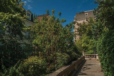 Sidewalk in wooded gardens at condos of Paris