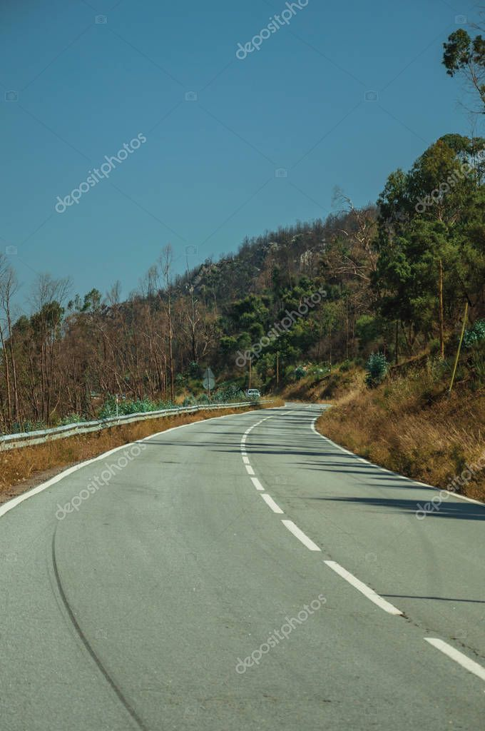 Road through hilly landscape with dry bushes and trees