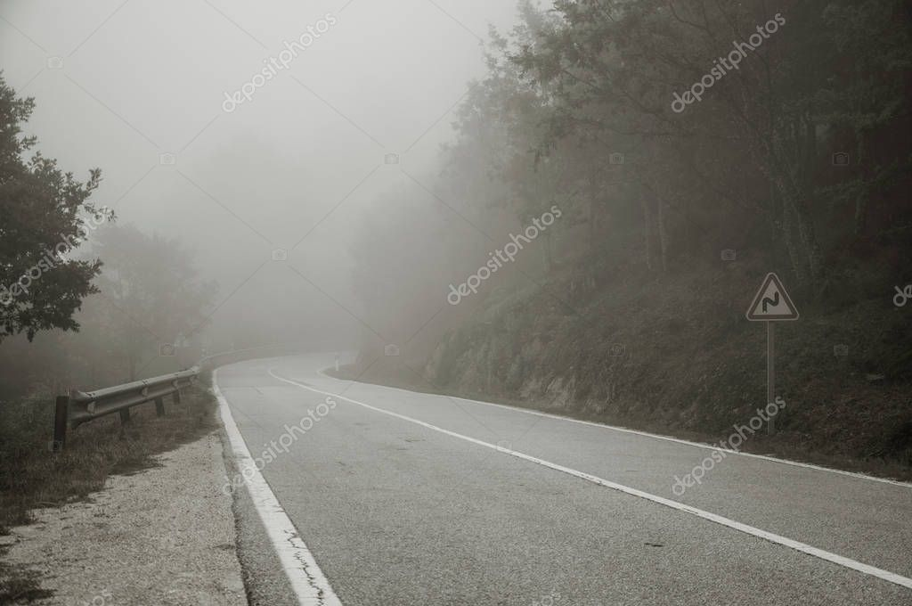 Road passing through wooden landscape with mist