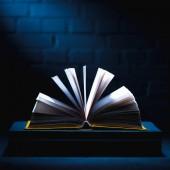 Offenes Buch mit leeren Seiten auf dunkler Tischplatte