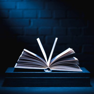 open book on dark surface with light on pages