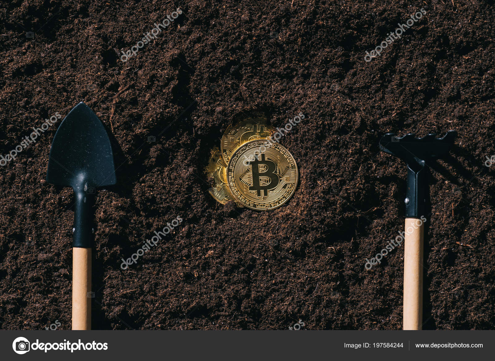 Vue Dessus Des Outils Jardinage Arrangés Bitcoins Sur Terrain ...