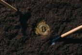 pohled shora uspořádány zahrádkářských potřeb a golden bitcoiny na zem