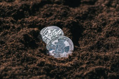 Close up view of silver bitcoins in ground stock vector