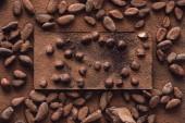 Fotografie pohled shora z čokolády s lískovými oříšky, obklopen muškátových vztahuje strouhanou čokoládou