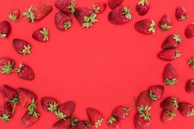 Frame of ripe summer strawberries isolated on red background