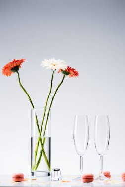 close up view of empty glasses, macarons and bouquet of gerbera flowers on grey background