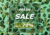 vista superiore del telaio quadrato bianco vendita fresco parole e belle foglie verdi fresche su verde