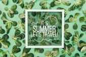 vista superiore di parole sue estate, permette di viaggiare nel telaio e bello foglie fresco verde su verde