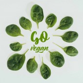 Fotografie top view of beautiful fresh green leaves and words go vegan isolated on grey