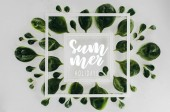 Fotografie top view of fresh green leaves and white square frames with words summer holidays on grey