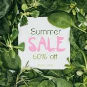 Fényképek felülnézet fehér kártya szavak nyári akció és a gyönyörű friss zöld levelek és a növények